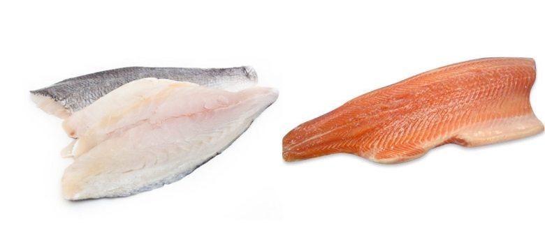 fish: June